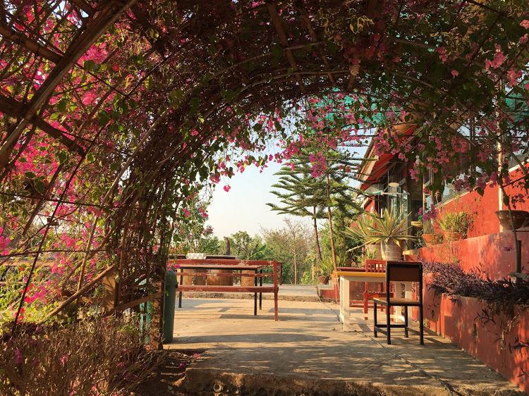ミャンマー インレー湖 ワイナリー