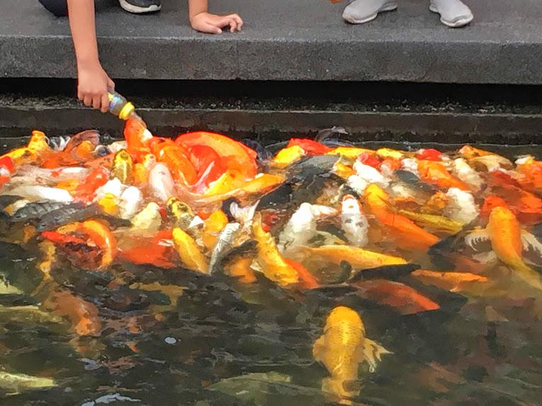 ウドンタニ観光 タイ中国文化センター