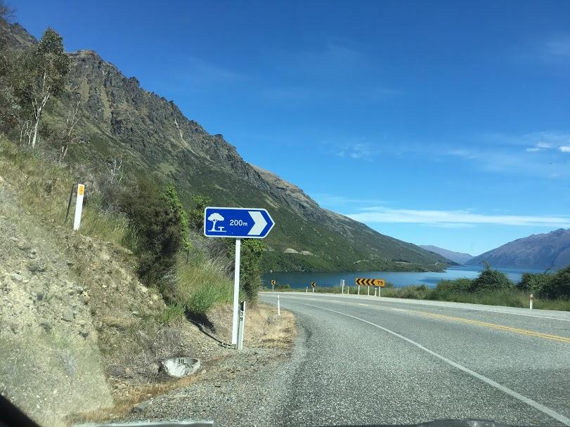 ニュージーランド ドライブ